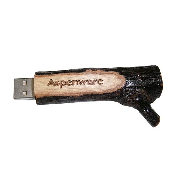 Branch USB drives with laser logo